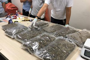 Bắt giữ hơn 30kg ma túy qua đường chuyển phát nhanh vào Việt Nam