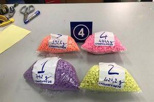 Bắt giữ hơn 31 kg ma túy vận chuyển qua đường chuyển phát nhanh