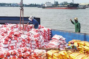 Dấu ấn hạt gạo Việt Nam