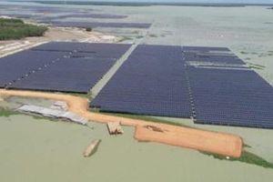 Phạt 6 dự án điện mặt trời hơn 50 tỉ đồng trên địa bàn tỉnh Tây Ninh