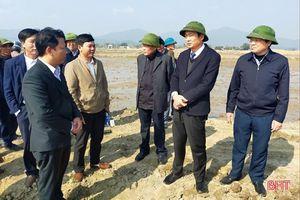 Chuyển đổi ruộng đất ở Can Lộc phải gắn với đổi mới hình thức sản xuất