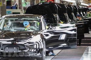 Mỹ yêu cầu Tesla triệu hồi gần 160.000 xe do lỗi màn hình cảm ứng