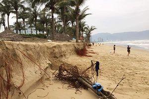 Đà Nẵng lên tiếng về tình trạng xói lở bờ biển do thời tiết cực đoan: Đến mùa khô bãi biển sẽ bồi trở lại