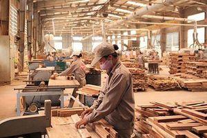 Sử dụng gỗ bền vững, hợp pháp trong các công trình kiến trúc - Xu thế chung của thế kỷ 21