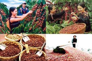 Xuất khẩu cà phê được dự báo sẽ tăng trưởng trong năm 2021