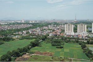 Mô hình 'định giá đất hàng loạt' và triển vọng áp dụng tại Việt Nam