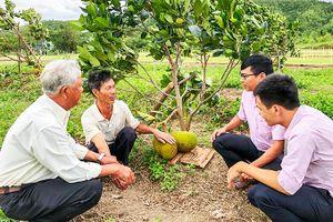 Vạn Ninh: Dư nợ tín dụng chính sách cho hộ nghèo và cận nghèo hơn 100 tỷ đồng