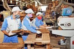 Xây dựng 273 mô hình trình diễn kỹ thuật sản xuất sản phẩm mới