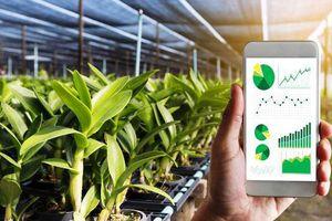 Bài 3: Chuyển đổi số trong nông nghiệp là xu hướng toàn cầu