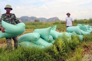 Thanh Hóa xuất khẩu nông sản đạt trên 112 triệu USD