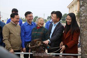 Tập đoàn Phúc Sơn, Báo Tiền Phong trao bò giống hỗ trợ bà con vùng lũ Hà Tĩnh