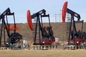 Texas, Oklahoma hấp dẫn giới đầu tư dầu mỏ hơn Alberta