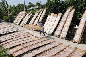 Làng bánh tráng Hậu Thành ở Tiền Giang vào mùa Tết