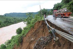 Phân vùng rủi ro thiên tai và lập bản đồ cảnh báo lũ quét, sạt lở, sụt lún đất