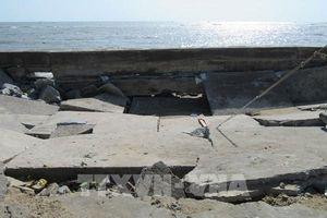 Khắc phục hư hỏng tuyến đê biển Đông Hải – Phú Thọ