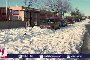 Bão tuyết gây thiệt hại nặng tại Tây Ban Nha