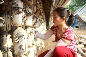 Đồng Nai tìm giải pháp phát triển làng nghề