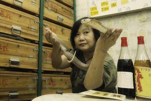 Người phụ nữ 50 năm làm nghề bắt rắn