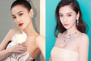 Huỳnh Thánh Y, Angelababy là đại gia của showbiz Trung Quốc