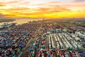 Quy mô cảng container quốc tế Cát Lái ở TP Thủ Đức
