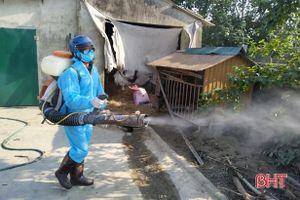 Thêm 11 con bò bệnh, Lộc Hà phun tiêu độc khử trùng trên diện rộng