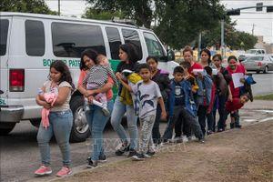Vấn đề người di cư: Số người di cư toàn cầu giảm 30%