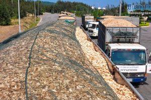 Siết chặt kiểm soát xe chở dăm gỗ từ 'gốc'