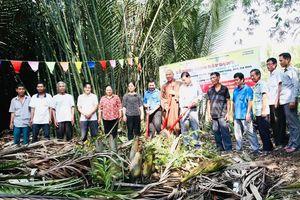 Chùa Long Bửu khởi công xây cầu bê-tông nông thôn