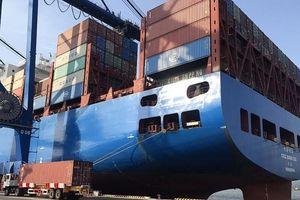 Kiểm tra hành vi tăng giá thuê tàu và container xuất khẩu