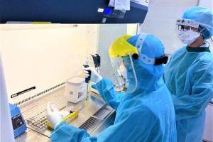 Chiều 16/1, chuyên gia người Nigeria mắc COVID-19, Việt Nam có 1.537 bệnh nhân