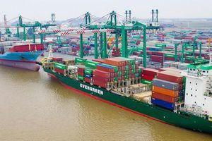 Nhóm nhà đầu tư cá nhân tiếp tục tăng sở hữu tại Tập đoàn Container Việt Nam (VSC)