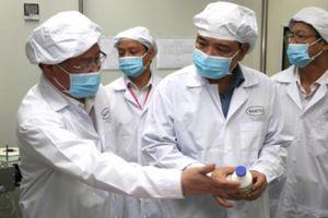 Việt Nam sắp sản xuất được vaccine phòng, chống dịch tả lợn châu Phi