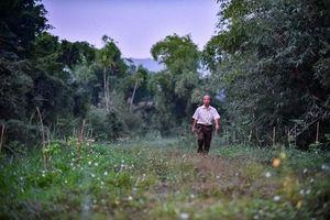 'Dị nhân' U70 chi 50 tỷ đồng làm tổ cho cò