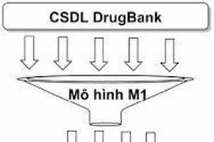 Phương pháp in silico mô phỏng phân tử docking, Phát hiện các chất tương tự dẫn xuất carbazole của 1,3-thiazole có tính kháng ung thư