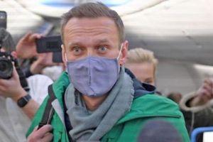 Alexei Navalny bị bắt giữ tại sân bay ở Matxcơva khi trở về Nga