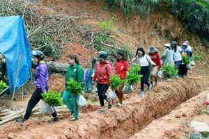 Tết An Bình 2021 'phủ xanh' vùng biên giới huyện Tây Giang (Quảng Nam)