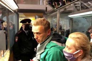 Ông Navalny bị cảnh sát Nga áp tải rời sân bay