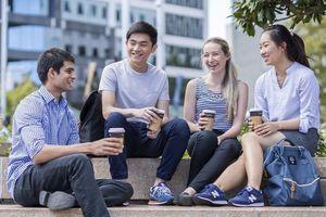 Tấm vé mới khởi động lộ trình du học New Zealand