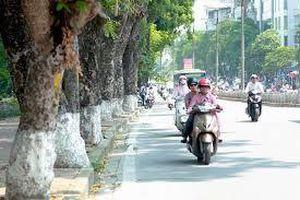 Chất lượng không khí Hà Nội đã cải thiện sau nhiều ngày ô nhiễm