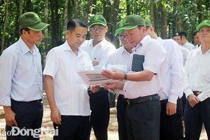 Rà soát tiến độ chuẩn bị lễ kỷ niệm 60 năm thành lập Khu ủy miền Đông Nam bộ