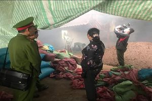 Đắk Nông: Phạt chủ lò sấy cà phê xả khói gây ô nhiễm môi trường
