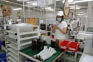 Thái Bình: Doanh nghiệp FDI nộp ngân sách vượt gần 69% dự toán