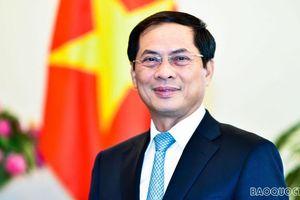 Đảng bộ Bộ Ngoại giao: Dấu ấn năm 2020