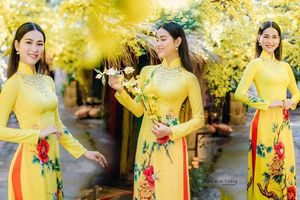 Top 5 Người đẹp Biển HHVN 2020 khoe đường cong quyến rũ với áo dài