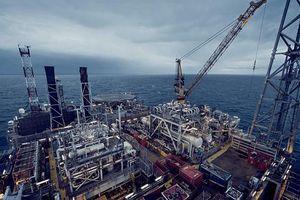 Nhu cầu dầu dự báo sẽ tăng trong năm nay