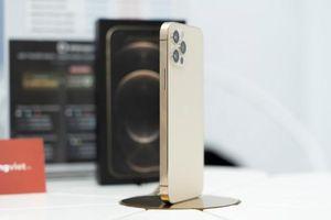 iPhone 12 VN/A đồng loạt giảm giá tối đa 5 triệu đồng dịp cận Tết