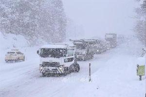 ít nhất 134 xe ô tô đâm liên hoàn do bão tuyết tại Nhật Bản