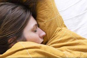 Giấc ngủ hay não bộ có trước ? Các nhà khoa học cho rằng họ đã tìm ra câu trải lời