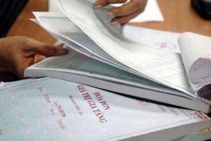 Gia Lai: Trốn thuế hơn 1 tỷ đồng, tổng giám đốc công ty bị khởi tố