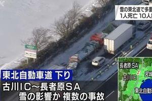 Hàng loạt xe đụng nhau trên cao tốc Nhật Bản vì bão tuyết
